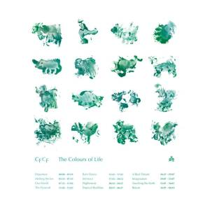 CFCF-the colours-of-life
